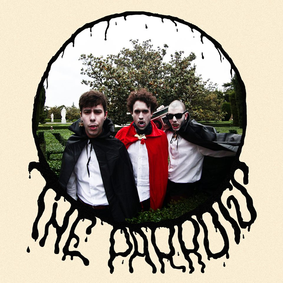 The Parrots - Loving You is Hard