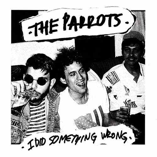 The Parrots - I Did Something Wrong